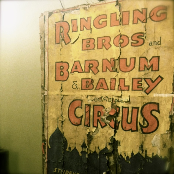 Magnificent Circus Poster