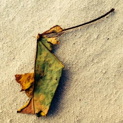 leaf lillibridge dakota 1966