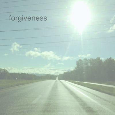 forgiveness lisa lillibridge