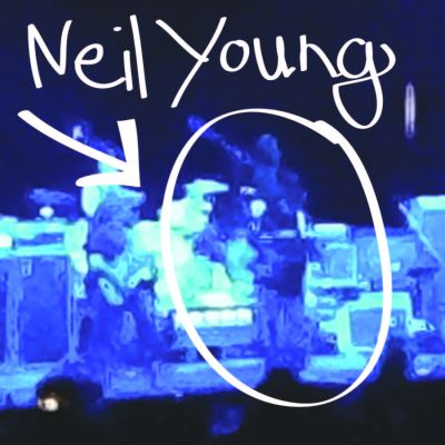 neil young lillibridge
