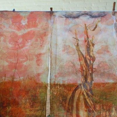 lisa lillibridge and elizabeth bunsen cornfield behind the curtain