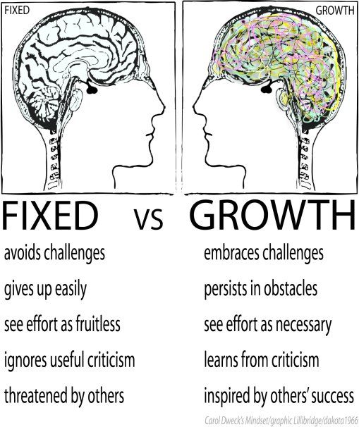 brain changes carol dweck lisa lillibridge