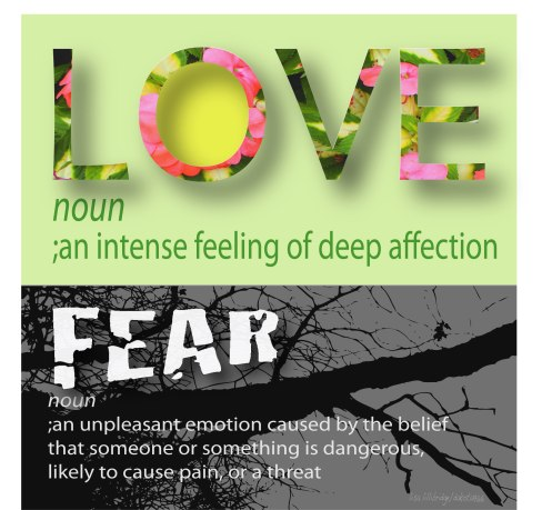 love and fear graphic lillibridge dakota
