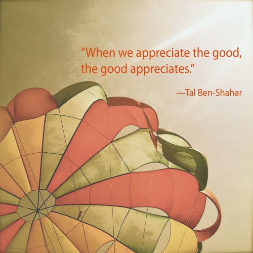 when-we-appreciate-the-good