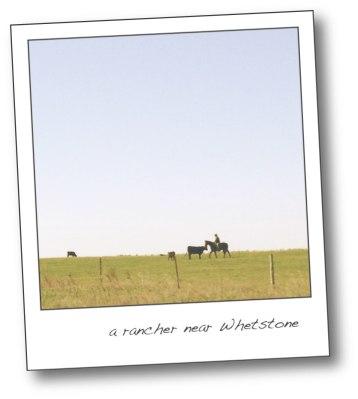rancher poloroid