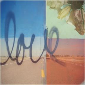 love of the road vida lisa lillibridge