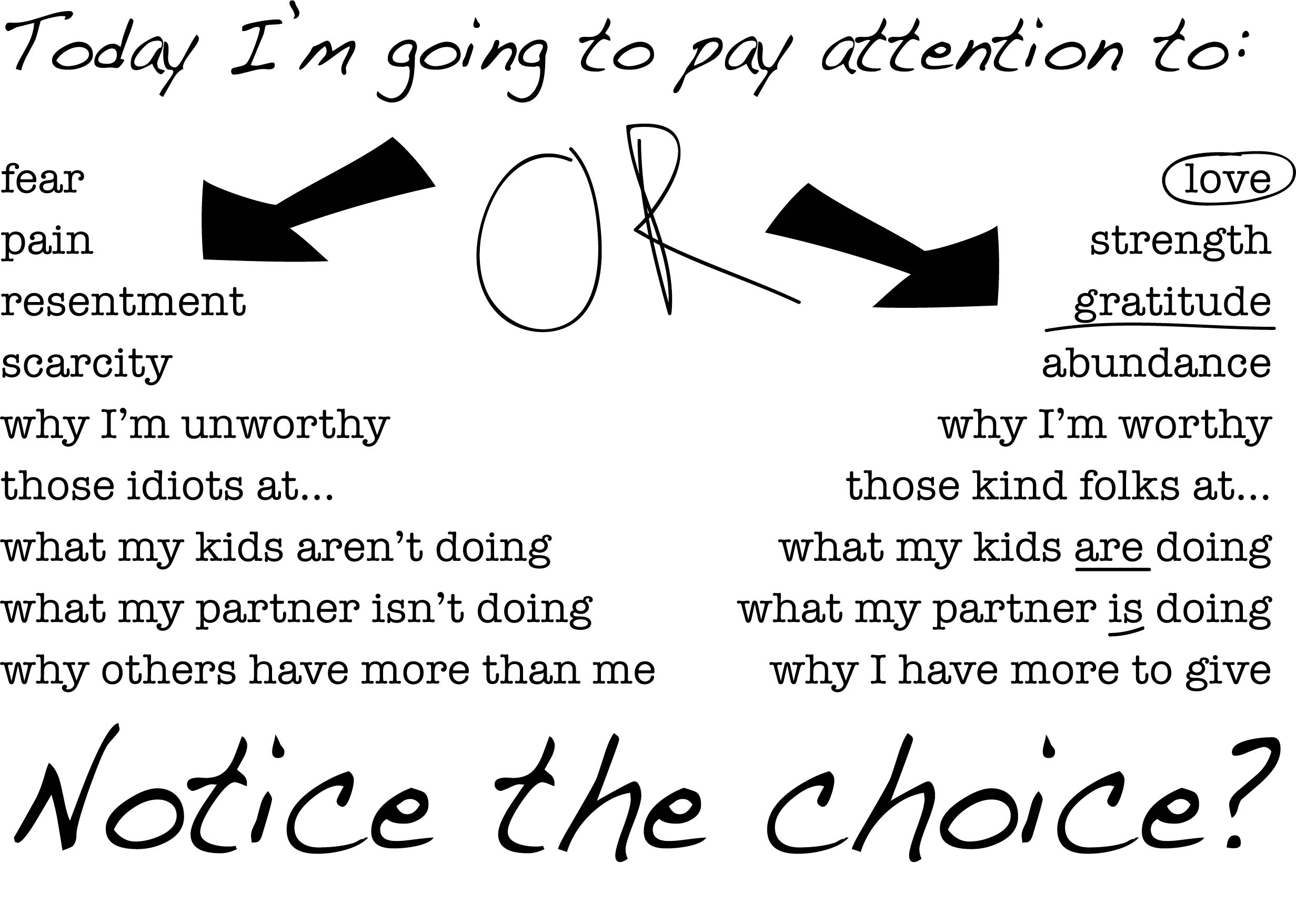 choices and attention lisa lillibridge