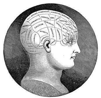 vintage brain image